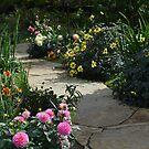 A Favorite Flower Garden by Paula Betz
