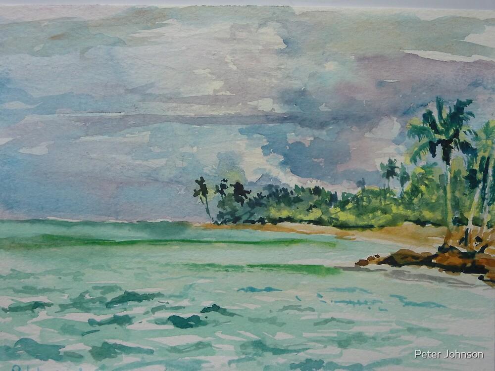 Coconuts Beach Samoa by Peter Johnson