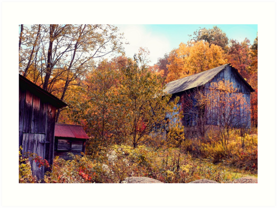 Autumn Barns by Jack Hunt