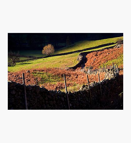 Last Light - Langdale - The Lake District Photographic Print