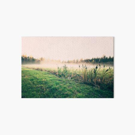 Mist Art Board Print