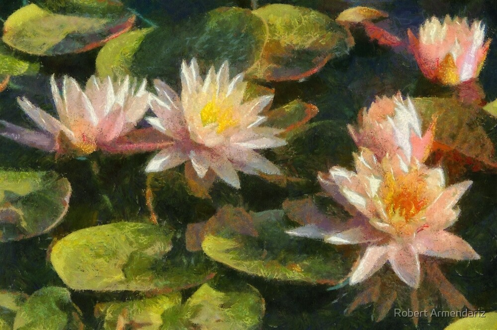 Fairy Skirt Water Lilies in DAP Monet by Robert Armendariz