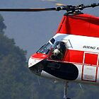 Columbia Helicopters Kawasaki-Vertol by Eric  Neitzel
