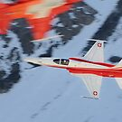Northrop F-5E Tiger II -  by Ted Lansing