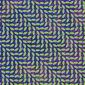 Animal Collective - Merriweather Post Pavilion by foxesmate4life