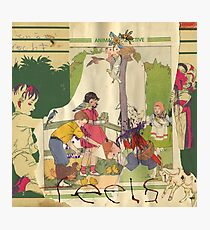 Animal Collective - Feels Photographic Print