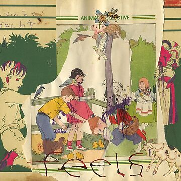 Animal Collective - Feels by foxesmate4life
