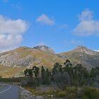 Sentinel Range, Southwest N.P., Tasmania, Australia by Margaret  Hyde