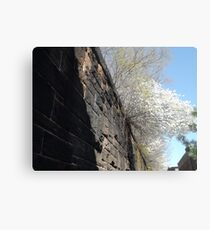 Harsimus Branch Embankment, Abandoned Pennsylvania Railroad Embankment, Jersey City, New Jersey Metal Print