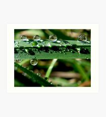 Droplets Art Print