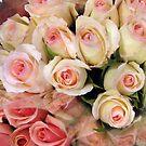 Roses and Romance by Betty Mackey