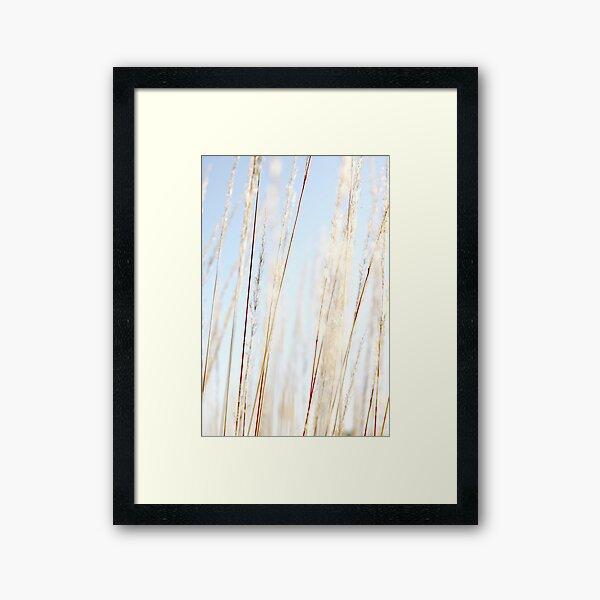 Lasting Light Framed Art Print