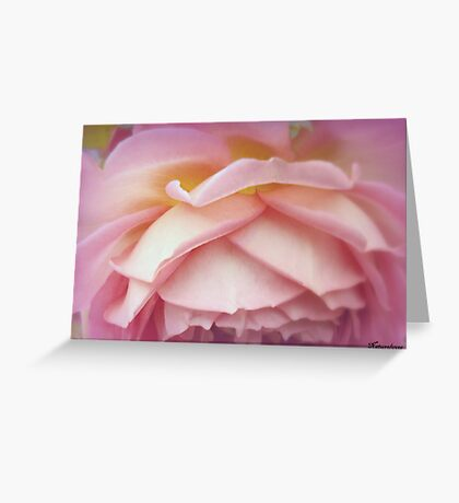 Falling Into You Greeting Card