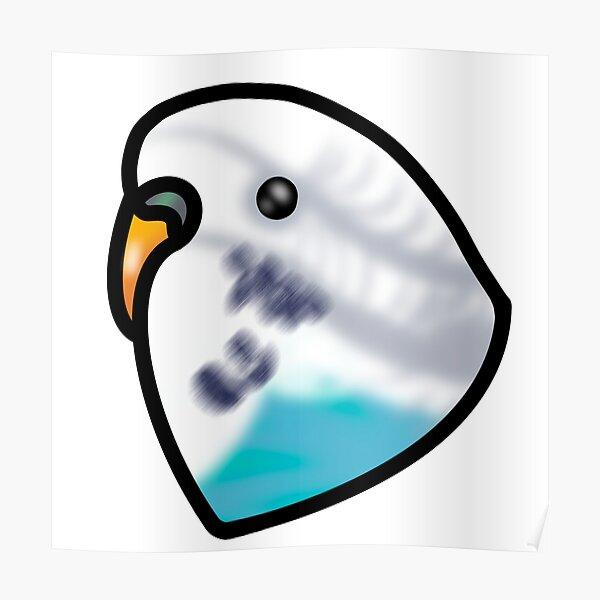 Blue Budgie Parakeet Poster
