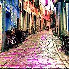 The Essence of Croatia - Rovinj Narrow Street by Igor Shrayer