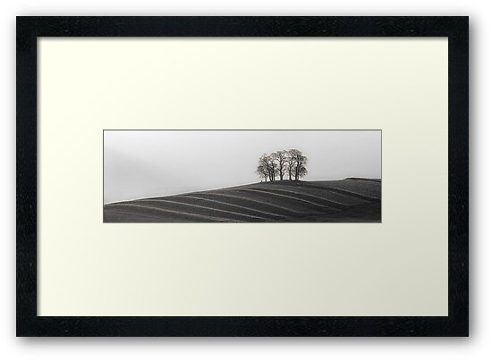Gallows Hill 02 - Nr Kirkby Stephen, Cumbria by ExclusivelyMono