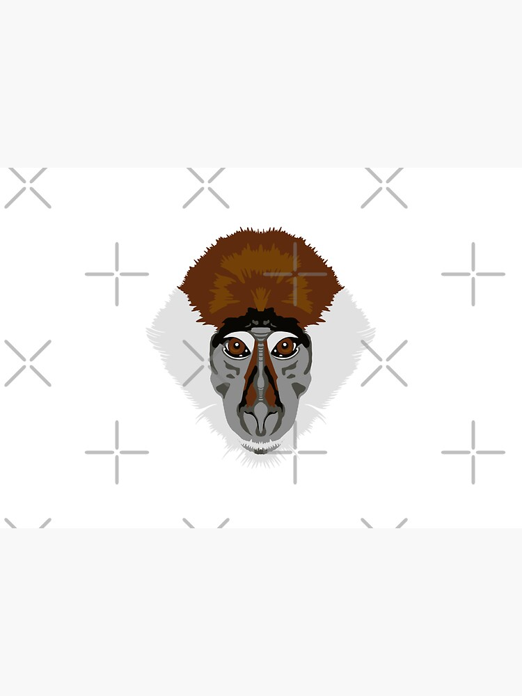 Red-capped Mangabey Face  by GeoCreate