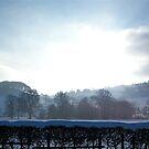 Snowy Buxton by Robert Steadman