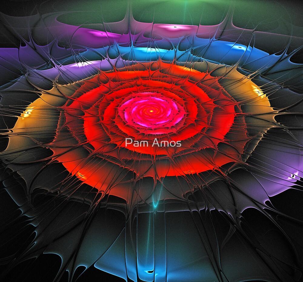 Ragged Rose by Pam Amos