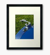 Automotive Bestiary ~ Part Three Framed Print