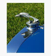 Automotive Bestiary ~ Part Three Photographic Print