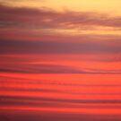 Yesterday's Sky by Kelly Chiara