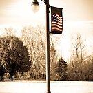 Patriotic Light Standard at Friendship Gardens by David Owens