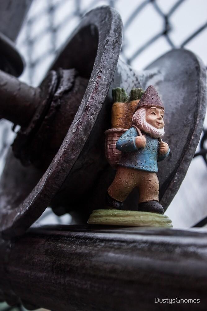 Wheel Roy by DustysGnomes