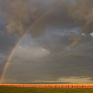 Country Rainbow by Gregg Williams