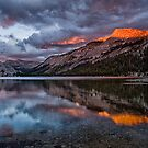 Tenaya Lake Sunset 2 by Cat Connor