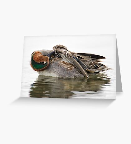 Grooming Teal Greeting Card