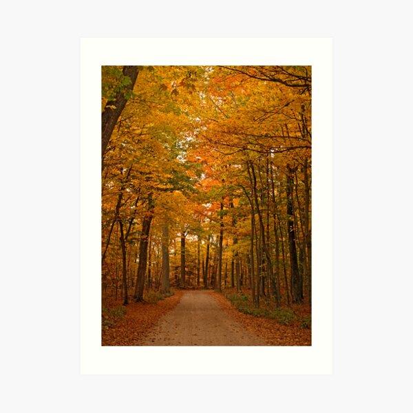 Autumn in Door County Art Print