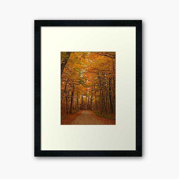 Autumn in Door County Framed Art Print