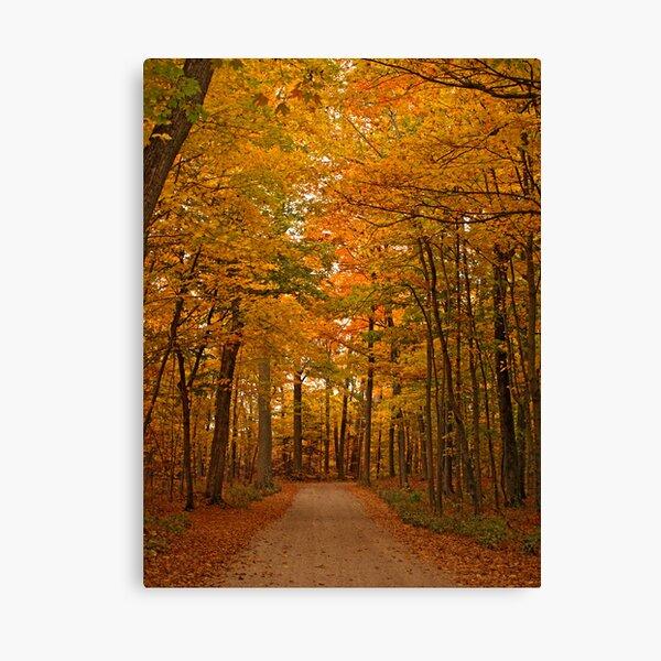 Autumn in Door County Canvas Print