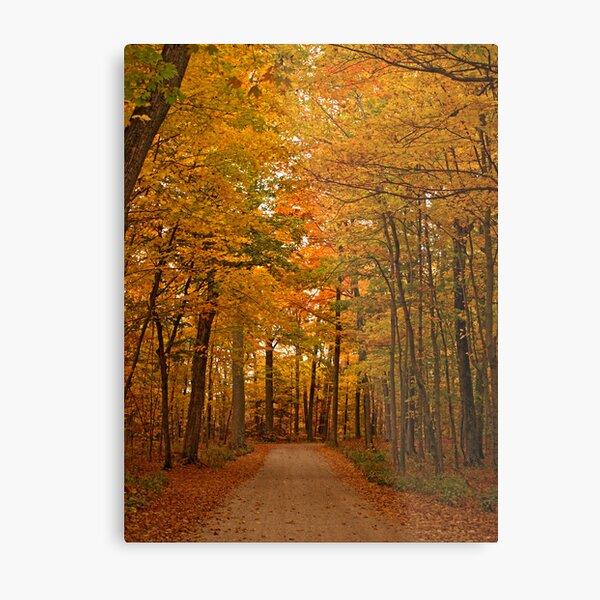Autumn in Door County Metal Print
