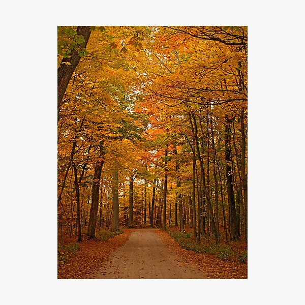 Autumn in Door County Photographic Print