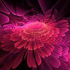 In the Pink by Belinda Osgood