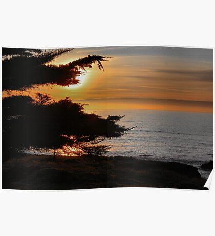 Sea Ranch Sunset Poster