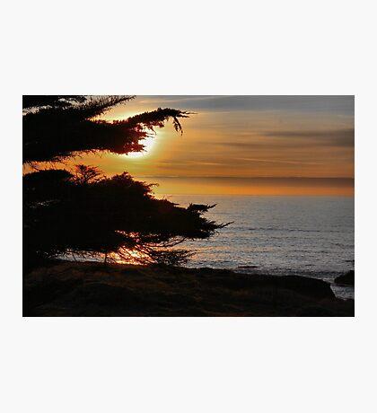 Sea Ranch Sunset Photographic Print