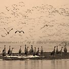 Sepia Moment of Rapture by Dawne Olson