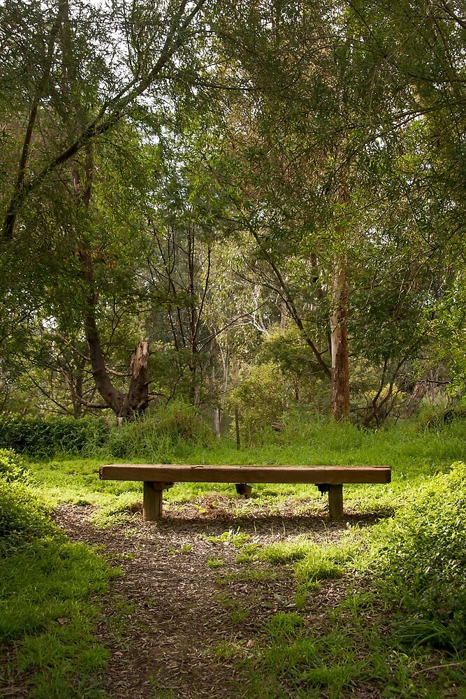 Bench in Park by Rob Chiarolli