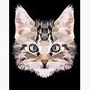 """CAT   ***   KITTY   /""""   ** LIMITED   PRINT # 3 Katze"""