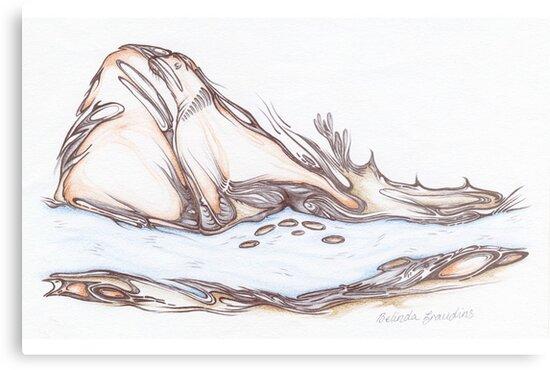 Seal Rock by Belinda  Graudins