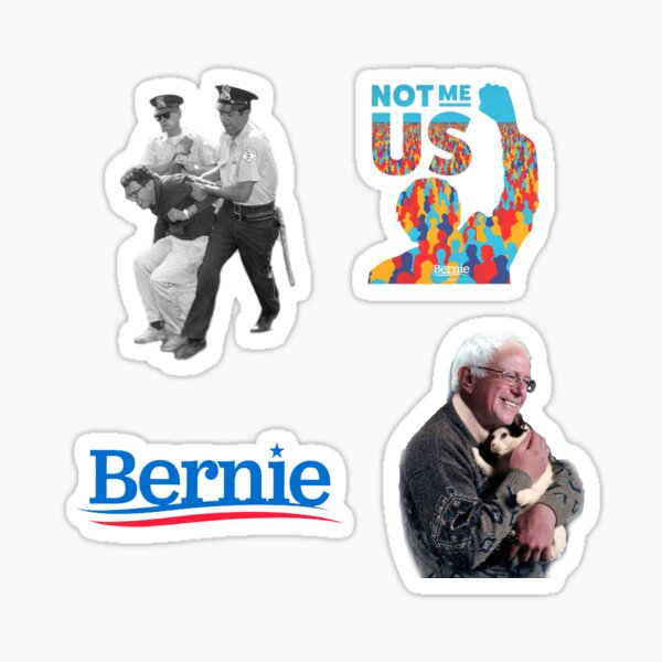 Bernie 2020 Sticker Pack Sticker