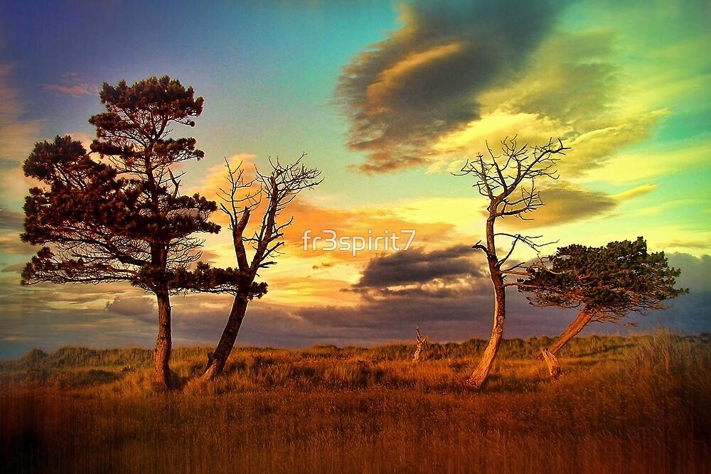 A Midsummer View by fr3spirit7