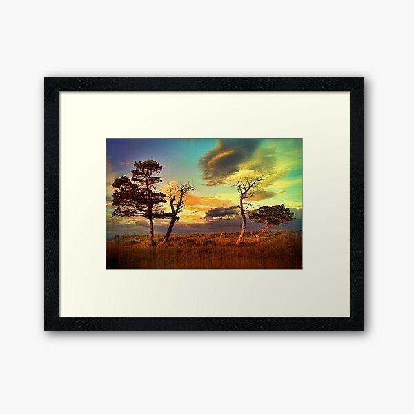 A Midsummer View Framed Art Print