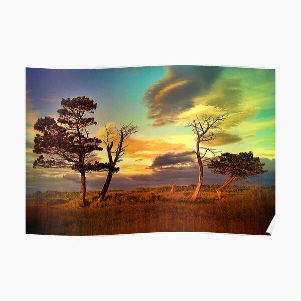 A Midsummer View Poster