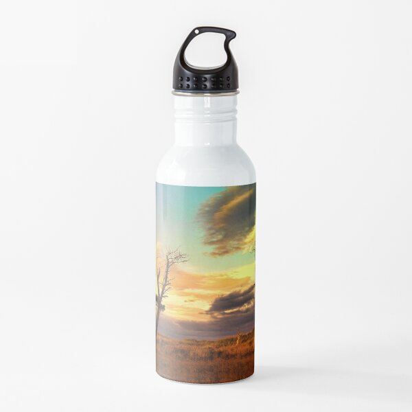 A Midsummer View Water Bottle