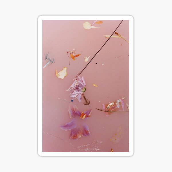 Pink Water Flowers Sticker