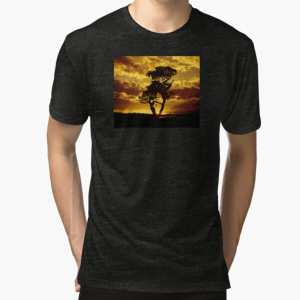 Tree Dance 2 Tri-blend T-Shirt